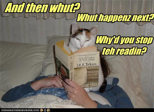 lol cat reading